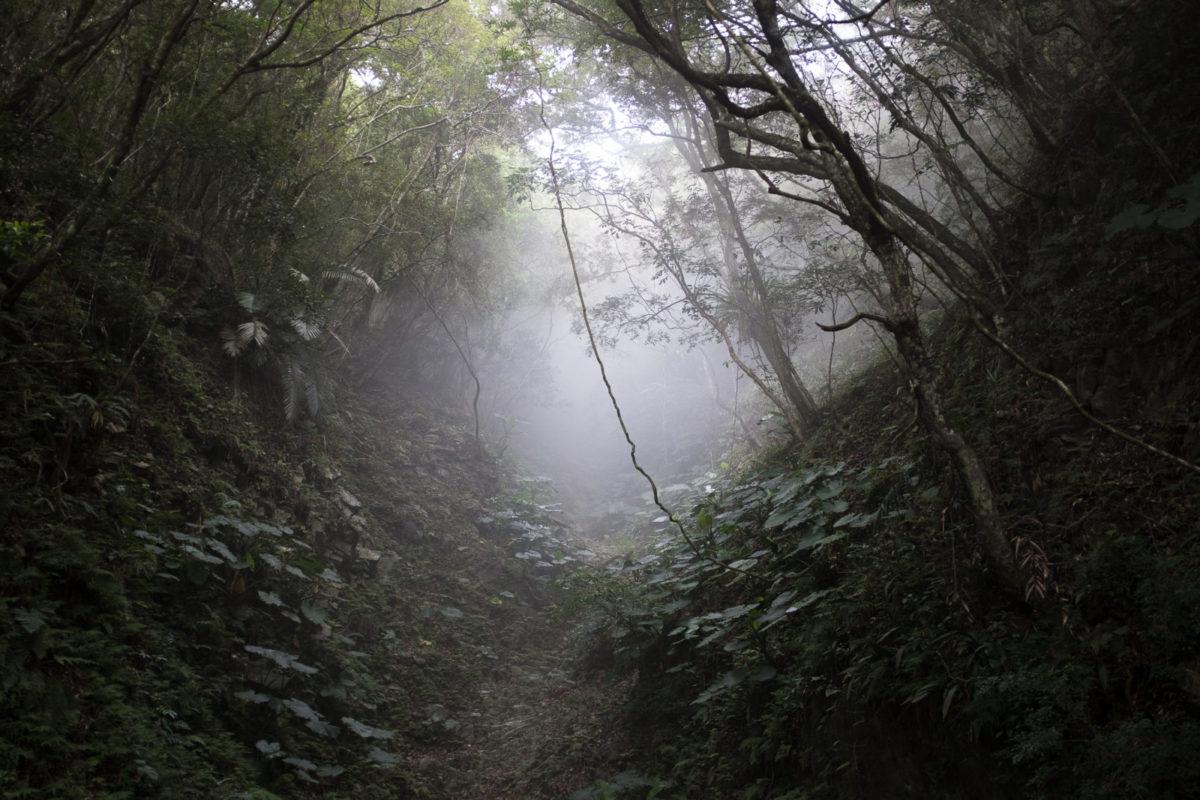 Zhuilu Old Road